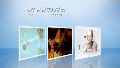 Windows DVD メーカーで作成した DVD のメニュー画面