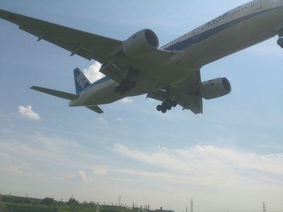 飛行機の下からのショット